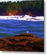 Seagull On Rock Metal Print