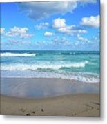 Seagull On The Atlantic Shore Metal Print