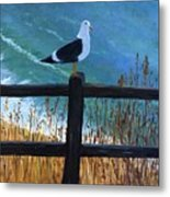 Seagull On The Fence Metal Print