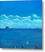 Seagull Seascape IIi Metal Print