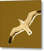 Seagull Sepia Metal Print by Cesar Marino