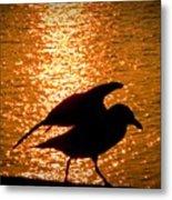 Seagull Silhouette Metal Print