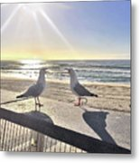 Seagull Sonnet  Metal Print
