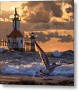 Seagull Takeoff - Tiscornia Beach  Metal Print