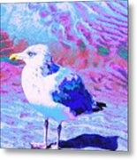 Cool And Colorful Gull Metal Print