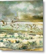 Seagulls At Sea Metal Print