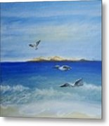 Seagulls By The Sea Metal Print
