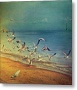 Seagulls Flying Metal Print by Istvan Kadar Photography