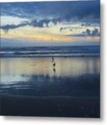 Seagulls On Beach At Sunset Metal Print