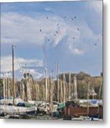 Seagulls Over Mylor Creek Boatyard Metal Print