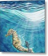 Seahorse Blues Metal Print