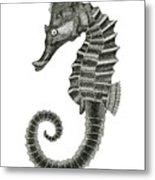 Seahorse Metal Print