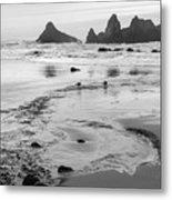 Seal Rock 0169 Metal Print