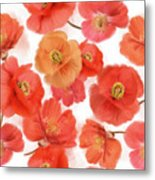 Seamless   Pattern Of Watercolor Poppy Flowers Metal Print