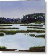Searching Savannah Marsh By Marilyn Nolan- Johnson Metal Print