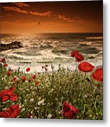 Seascape With Poppies Metal Print