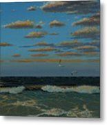 Seascape With Tearns Metal Print