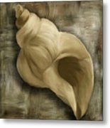 Seashell Abstract Metal Print