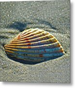 Seashell After The Wave Square Metal Print