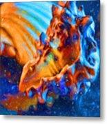 Seashells Abstract Metal Print