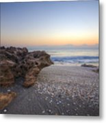 Seashells At The Seashore Metal Print