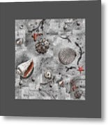 Seashells Collage Of Any Color Metal Print