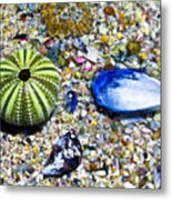 Seashore Colors Metal Print