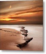 Seashore Wonders Metal Print