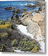 Seaside Flowers And Rocky Shore Metal Print