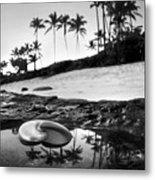 Seaside Treasure Metal Print