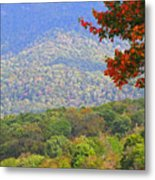 Seasonal Color Metal Print