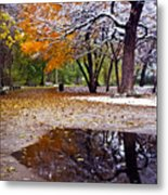 Seasons Changing Metal Print