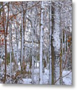 Season's First Snow Metal Print