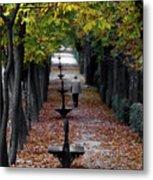 Seasons - Pathway Metal Print