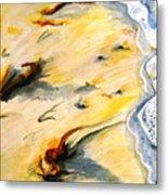 Seaswept Metal Print