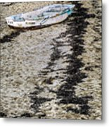 Seaweed And Sand Metal Print