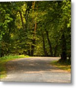 Secluded Forest Road Metal Print