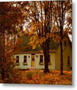 Secluded In The Trees Metal Print