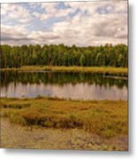 Secluded Lake Metal Print