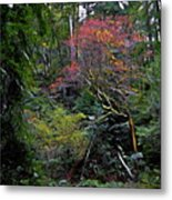 Secret Of The Forest Metal Print