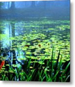 Secret Quiet Pond Metal Print
