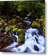 Secret Stream Metal Print