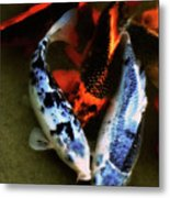 Secrets Of The Wild Koi 10 Metal Print