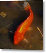 Secrets Of The Wild Koi 5 Metal Print