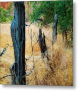 Sedona Fence And Field Metal Print