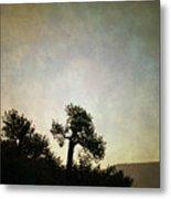 Sedona Landscape Xv Metal Print