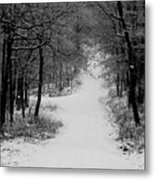 See Where It Leads. Metal Print