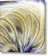Seedheads Metal Print