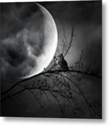 Seer Of Souls Metal Print