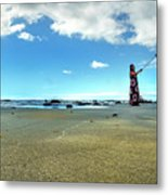 Selfy On The Beach Metal Print